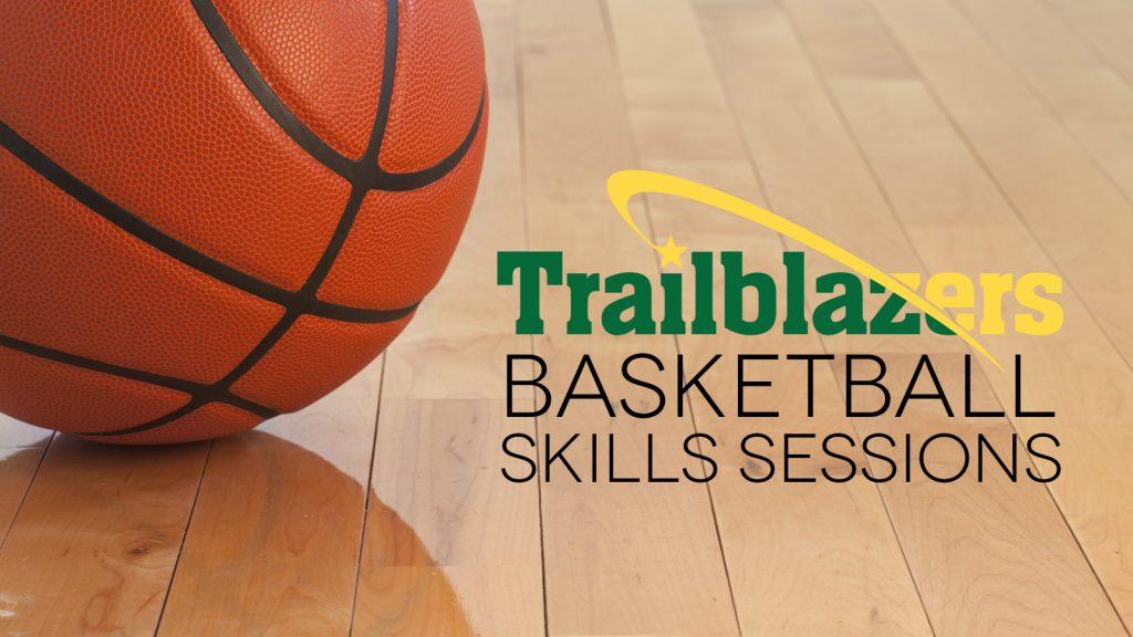 Basketball Skills Sessions